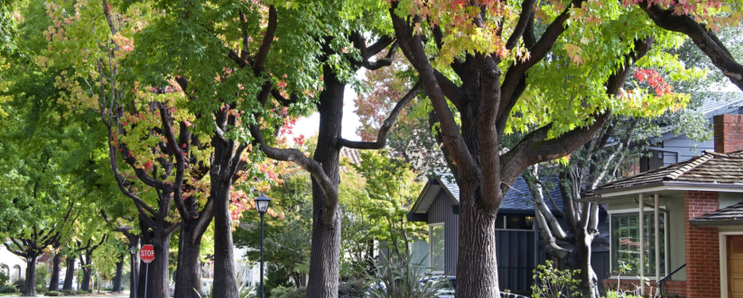 Location, Inc. makes neighborhood data available viaAPI